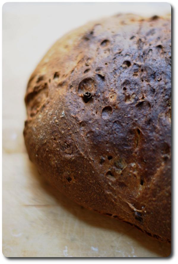 pane con cipolle intero rdb