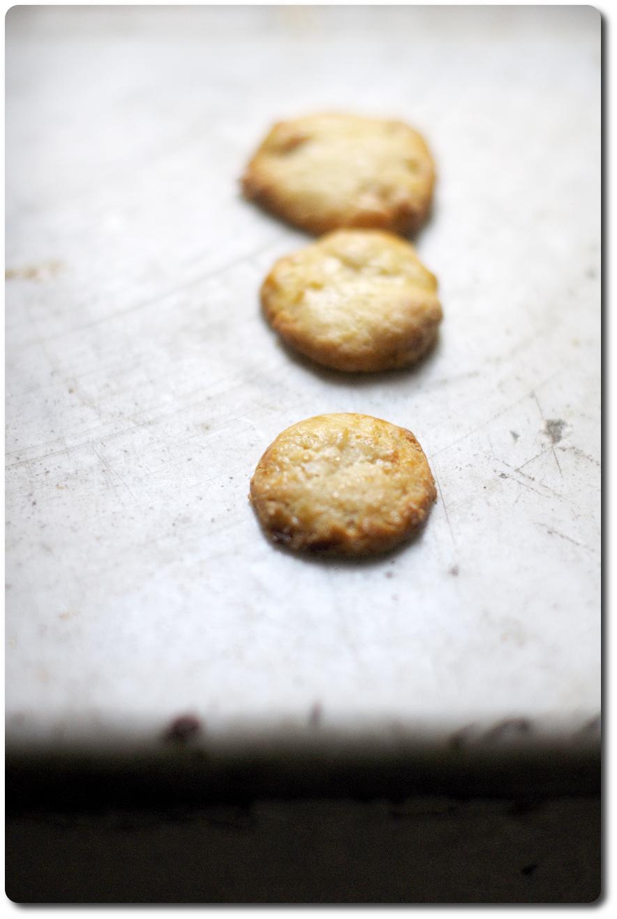 biscotti lievito birra fichi 2