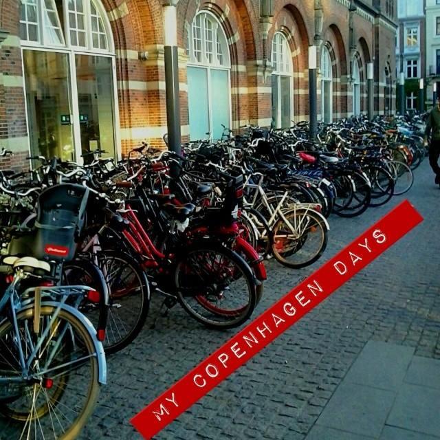 copenhagen bici